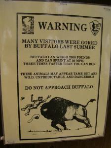 Buffalo are Dangerous